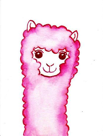 Alpaca28